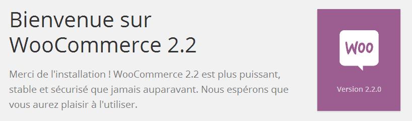 WooCommerce 2.2