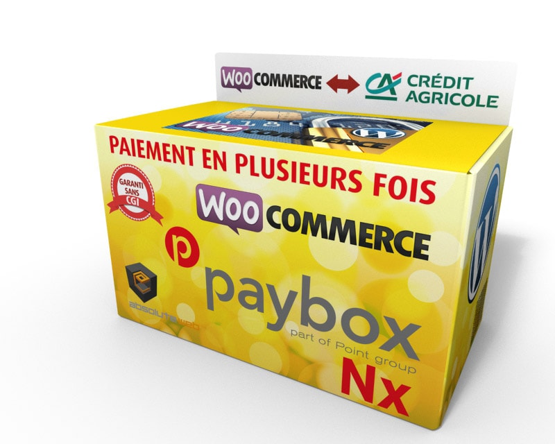 paiement plusieurs fois paybox pour woocommerce absolute web. Black Bedroom Furniture Sets. Home Design Ideas